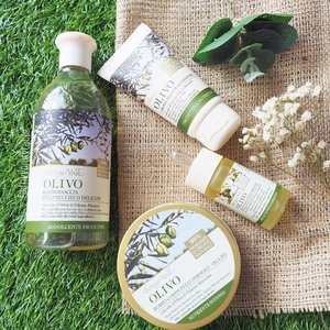🌳NEW natural Olive line skincare from @bottegaverdesg !Formulated with finest extra virgin Olive oil from Tuscany, this range provides intense nourishment, moisturization and healing to mature or dry skins. Containing up to 98% of naturally-derived ingredients, Bottega Verde's head-to-toe Olive range consists of a Face Cream, Facial Oil, Lip Balm Stick, Hand Cream, Extra Gentle Soap, Bath and Shower Gel, Body Oil and Body Butter. - Tested the shower gel and body butter. My parched post-winter skin finally stopped itching and the rashes are gradually clearing up. 👍🏼 An added bonus: the thick body butter doesn't feel greasy - just don't over apply!  #clozette #skincare #bodycare