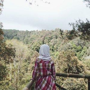 My current favorite place. Sayang, jauh. 😂  Lihat lebih banyak di YouTube-ku. Link di bio 😄  #clozetteid #shagoingplaces #pal16 #travel #nature #forest #vlog #cikole