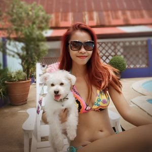 Spent time with these two before heading to Jakarta soon 😍❤️💋💄🐶 ..Love you my kids @budje_thedogs ❤️❤️❤️❤️❤️❤️❤️❤️..Bikini by @niconicomare (Bali) 🍷👙💋❤️...#indonesianlivinginbangkok #starclozetter #clozetteid #indonesian #swimsuit #bikini #qualitytime #budjethedogs #bangkok #thailand #enjoylife #swimwear