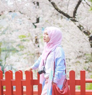 Ano shigatsu..Meet me under the sakura tree 🌸.#clozetteid