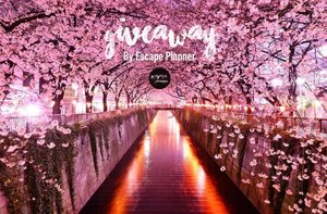 "I choose Tokyo: Definitely go to shibuya and harajuku ""where fashion people and shopping spot is"", laduree (their blush on and lip stick are really pretty!!), visitTokyo disney sea🙌🏻. Finger Crossed :) #escapeplanner #giveawayescapeplanner #giveawayindonesia  #instagood #photo #instamood #instadaily #instalike #tagsforlikes #bestoftheday #jj #clozetteID #webstagram #tflers #life #fashion #blogger #cotd #tagsforlikes #travel"