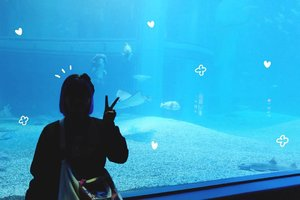 I have extraordinary love for aquarium ❤ I love sea creatures but too scared to be near them so yeah, aquarium it is 😛 Anyway, you can read my blogpost about Osaka Aquarium Kaiyukan on #bigdreamerblog #BigDreamerInJapan 🐠...#clozetteid #travelblogger #fashionblogger #lifestyleblogger #osakaaquariumkaiyukan #osaka #japan #japanloverme #ggrep #exploringtheglobe #theglobewanderer #wanderlust #aquarium #여행 #여행그램 #여행스타그램 #파워블로거 #旅行 #旅日記 #大坂