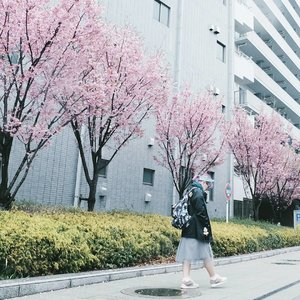 Because no one could make my dreams come true but me. New post is up on #bigdreamerblog 👌...#clozetteid #japan #tokyo #sakura #cherryblossoms #meguro #fashionbloggers #fbloggers #bbloggers #lifestylebloggers #travelblog #abmtravelbug #japanloverme #ggrep