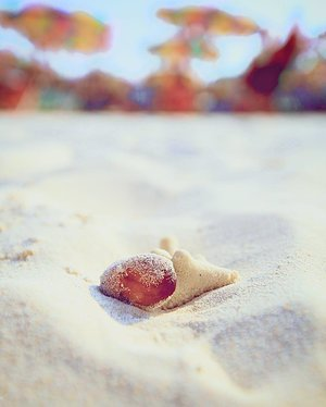 They say say seashells are love letters in the sand. 🐚 📷: YT, Creative Director of @honeyzpainthouse  #clozette