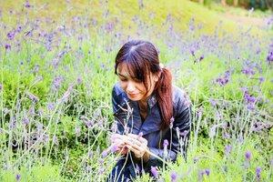 Lavender Farm #taiwan #taizhong #lavender #clozette #travelaroundtheworld #flowers