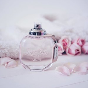 A cold, rainy Monday morning calls for a sweet, musky spritz by Coach the Fragrance for an energized vibe 💗 Opening with floral notes of raspberry leaf, pink pepper and pear before it gets amplified by a hearty Turkish Rose 🌹 It then makes a soft exit of suede musk and sandalwood that makes me just want to cozy up with my knitted cardigan for that soft familiar vibe I had down under (on cooler days). What's your fragrance pick today? Do share! x #clozette #coachsg #coachthefragrance #bbloggers #beautychat #luxasia