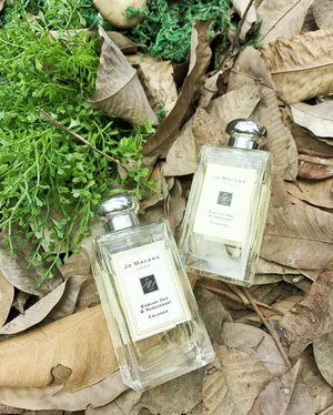 When I heard of #EnglishOak, I related the fragrance to mature (nice way of putting old), earthy & woody.  Well, I must say @jomalonelondon combined this fragrance well with Redcurrent (Fruity) and Hazelnut (Spicy). ... I fell in love with English Oak & Redcurrent. It is WOODY BUT GROOVY! Will be my go-to morning scent. These 2 will be available in September. . . #jomalonelondon #newscent #launch #fragrance #jomalonemy #cologne #smellinggood #beautyblogger #blogger #beautyreview #citrus #clozette #instabeauty #malaysianblogger