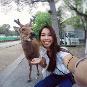 Deers are actually very naughty and hard to photograph lollll. Got this lucky shot using the GoPro from @rentsomethingleh. They provide rental services for all sorts of equipment from DSLRs to even drones!.Can't wait to finish editing the video footage (also shot on GoPro) of the entire trip woohoo #sp