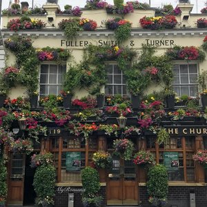 Good morning from #London 🇬🇧 This must be the prettiest pub fasçade ever. My favourite view each time I arrive in(& leave) London. #MyRomana #clozette #summer #flowers