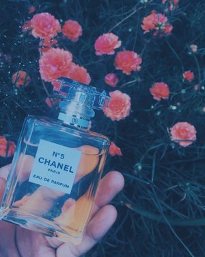 the classic scent to go with my classic look 🖤 • • • • • • • #chanel #chanelno5 #fragrance #vscoph #clozette #love #clozzeter #salamatkapatid #flatlay #flowers #loveit #instagood