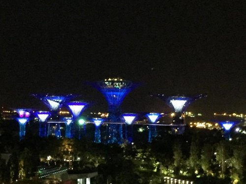 """<div class=""""photoCaption"""">How beautiful is this night view of Singapore's Gardens By the Bay, captured from my hotel room at night? . . . . . . . . . .  #details  #mycasualstyle #abmhappylife  #styleguide #acolorstory #styleinfluencer #styleinspiration #ootdenvy #bagaddictsanon #fashionbloggers #fashiondiaries  #fashiongram #fashionpost #ootdwatch #wiwt #fashiongirl #thatsdarling #ootdshare #abmlifeiscolorful  #whatiwore #clozette  #myunicornlife  #currentlywearing #effortlessstyle #todayiwore  #flashesofdelight #pursuepretty  #ootdfash #outfitpost</div>"""