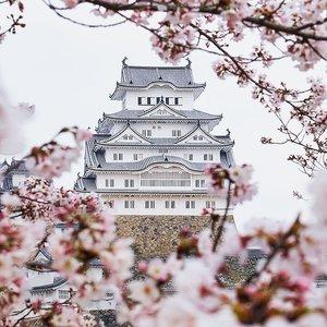#桜 #さくら🌸 #castle #salahseasonwoy