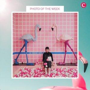 Clozette Photo of the WeekBy @febrinaadiputraFollow her Instagram & ClozetteID Account. #ClozetteID #ClozetteIDPOTW