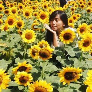 When it's over, leave. Don't continue watering a dead flower.  #playingwitharvi #saturday #flower #BeautyBlogger #beautybloggerreview #bandung #jakartabeautyblogger #bloggerceria #clozetteid #beautyhauls #bandunghits #sunflower #yellow #sun #pinkmakeup #undiscovered_muas #wakeupandmakeup #beautybloggerindonesia #indobeautygram #indobeautysquad #Bloggirlsid #JakartaBeautyBlogger #beautybloggerid #bloggermafia #setterspace #redmakeup #tampilcantik #lfl #pvjbandubg  #love #lovely