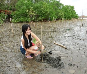 Yay! I got a chance to participate in planting mangrove in Batu Karas, Pangandaran, West Java 😍 This is one of ecotourism in West Java, Indonesia, in addition to efforts to preserve the environment and cultivate Mangrove. Batu Karas mangrove forests is a new alternative tourists site in pangandaran. You can just do sightseeing or utilise the educational facilities.  The nature is still beautiful, and the air is still cool there.😊 #mangrove #ecotourism #ExploreWestJava #wonderfulIndonesia #pesonaIndonesia #batukaras #pangandaran #Indonesia #travel #travelling #traveller #tourism #lifestyle #ootd #shortjeans #mud #ClozetteID #clozetteambassador @clozetteid