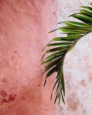 Bricks and walls they share your secret tale 🤫 // picture credit #pinterest ....#pink #aesthetic #wall #clozetteid