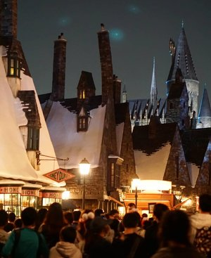 And the crowd, it's skin to skin experience, need to say more? .  #wizardingworldofharrypotter #USJ #universalstudiojapan #Japan #osaka #TRAVEL #triptojapan #spring2018 #hogwartscastle #castle #Clozetteid #hogwarts