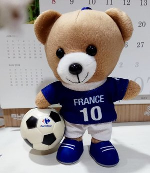 Congratulations @equipedefrance for winning World Cup 2018!......#ClozetteID#WorldCupFinal#WorldCup#WorldCup2018#France#Russia#Moscow#fiersdetrebleus#equipedefrance#trendingtopic#moodygrams